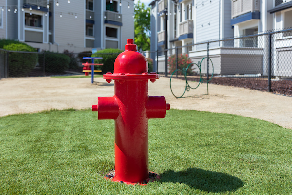 Dog park with fire hydrant.