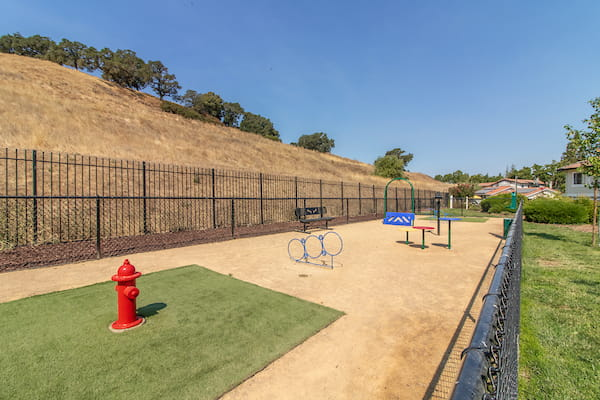 Gated dog park with grass area and obstacle course.