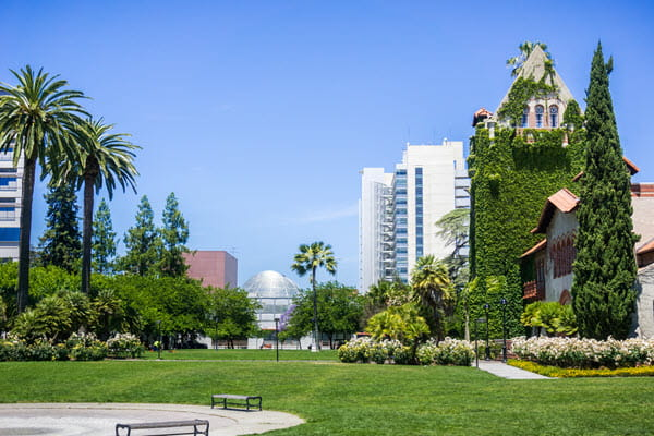 Park with landscaped foliage and tall buildings.