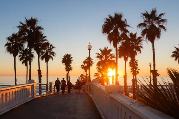 Walking bridge surrounded by palm trees at sunset.