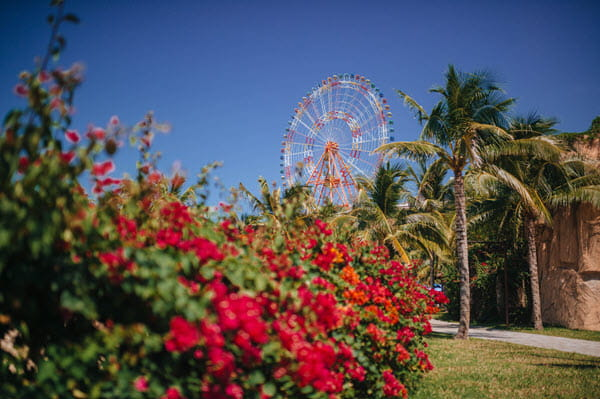 Lush landscaping with ferris wheel in background.