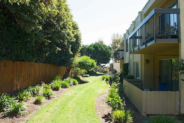 Grass pathway with plants alongside exterior of apartment homes.