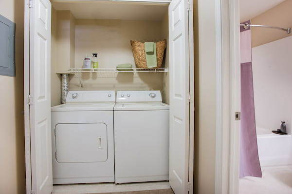 Staged in-home washer and dryer in closet.