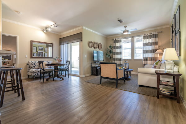 Living room with hardwood-style vinyl flooring