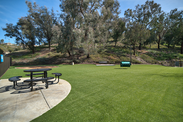 Grassy dog park with agility obstacle and patio table.