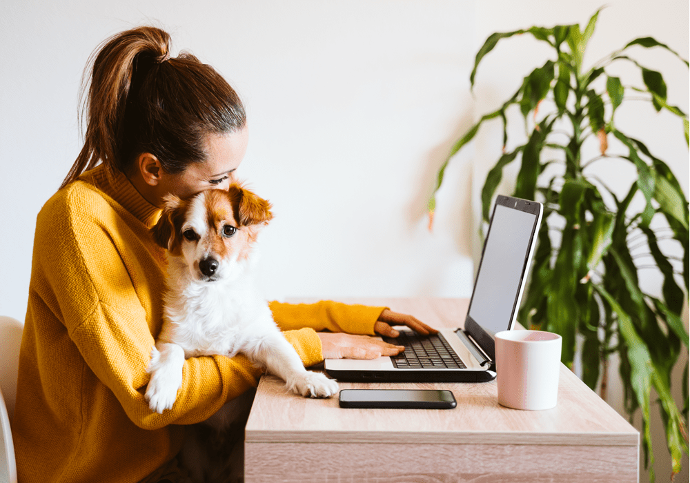 Woman cuddling dog at her home office in bedroom.
