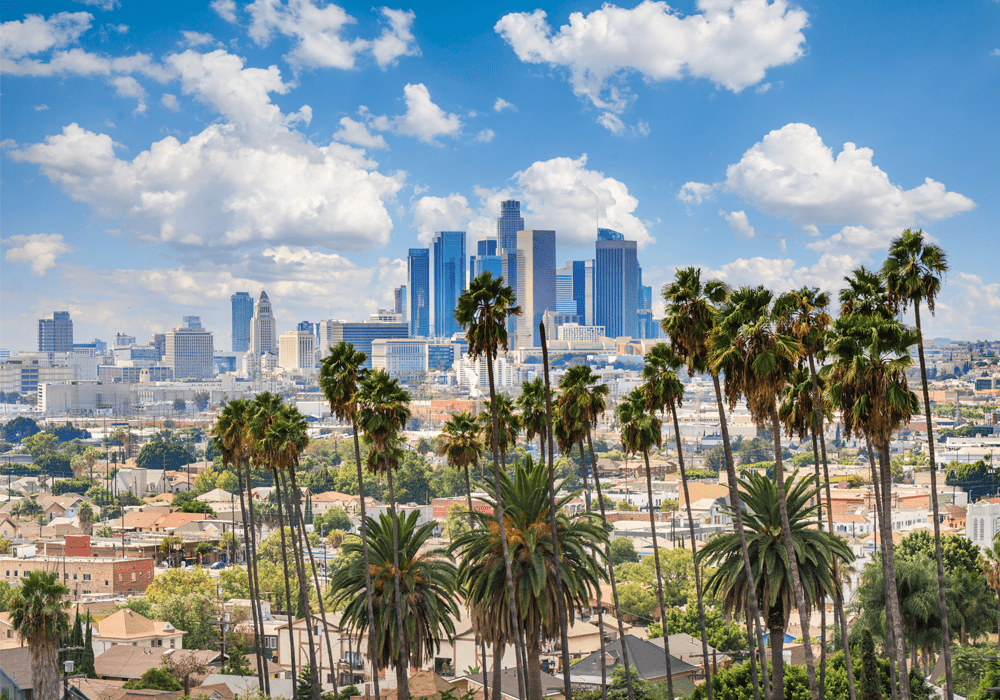 Cloudy day of Los Angeles Downtown Skyline with palm trees in foreground