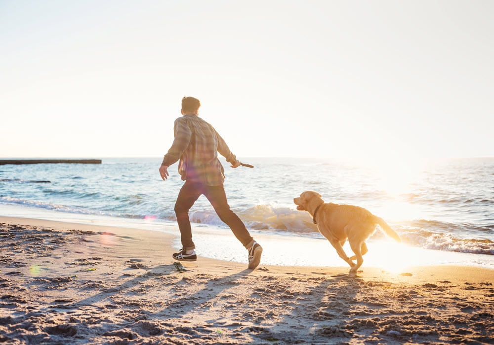 Man and his dog playing fetch at a Northern California beach.